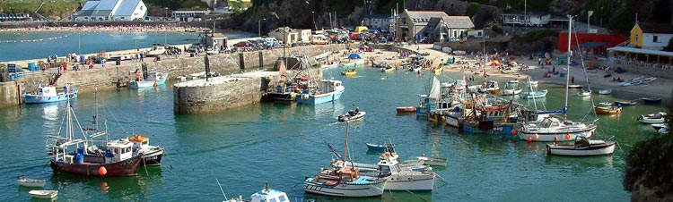 newquay habour